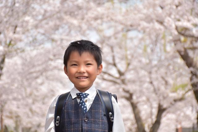 桜の咲く中、ランドセルを背負う1年生の男の子